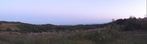 夕暮れの泉ヶ岳(スイングモード)