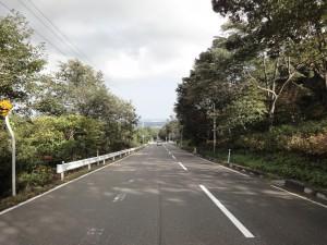 泉ヶ岳下山途中のストレートな下り坂。中央奥が仙台市内。