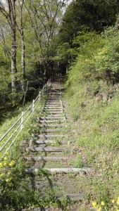 伊達小次郎君のお墓に続く険しい山道